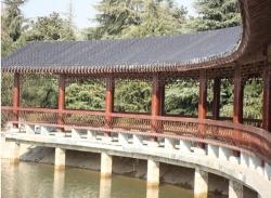 广西防腐木长廊1